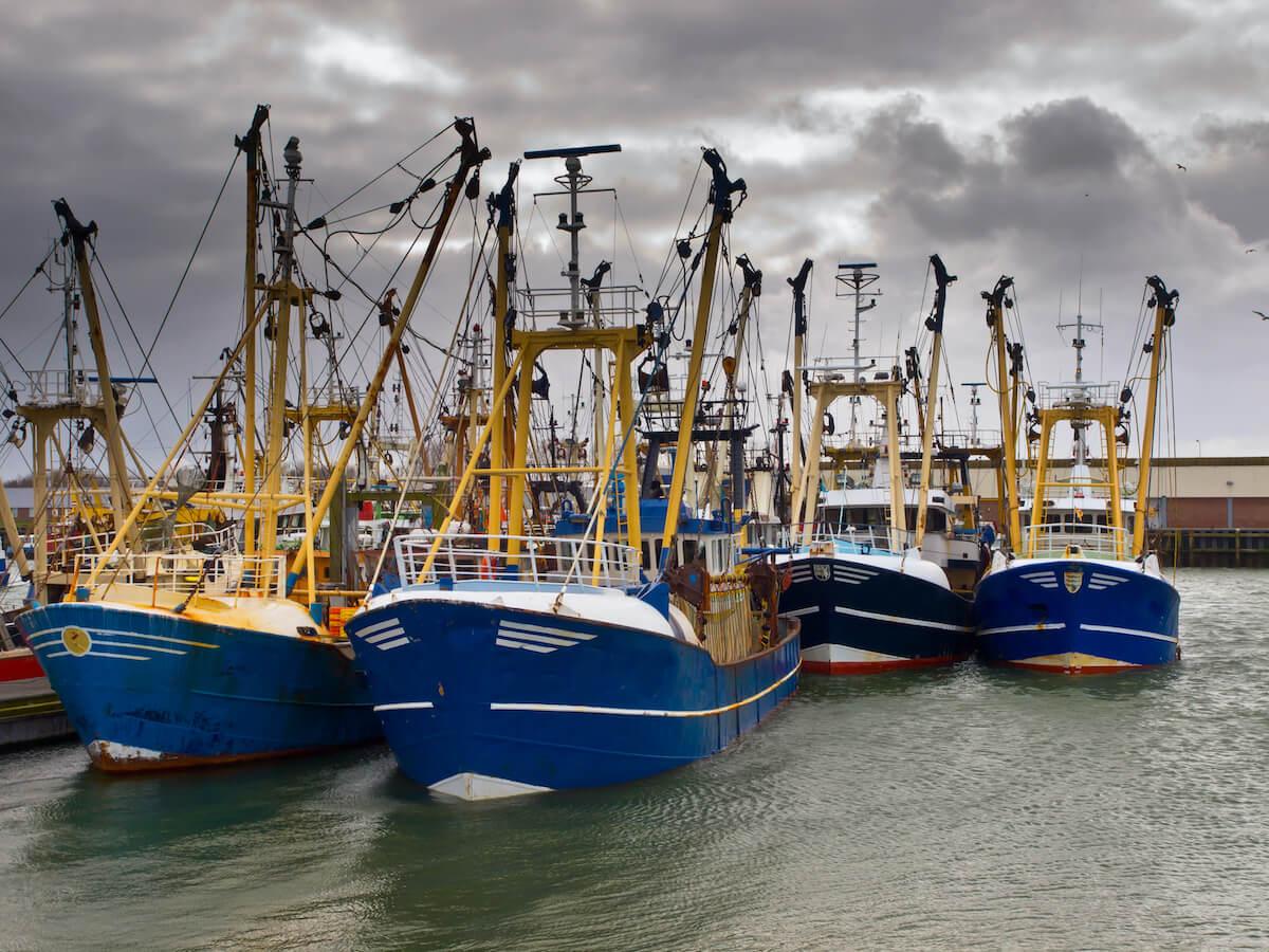 Vissersvloot uitgelichte afbeelding op Vishandel Waninge in Lochem uit de Achterhoek